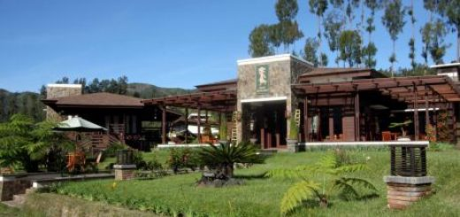 Hotel Java Banana & Resort di Bromo