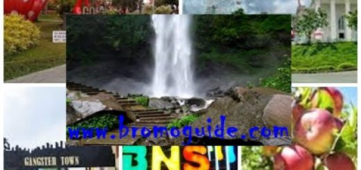 Paket Wisata Batu Malang City Tour 2 Hari 1 Malam