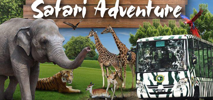 Paket Wisata Bromo Taman Safari 2 Hari 1 Malam