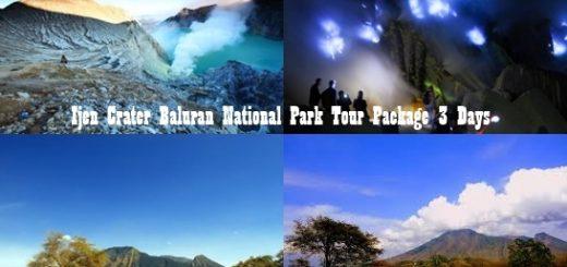 Ijen Crater Tour Baluran National Park 3 Days