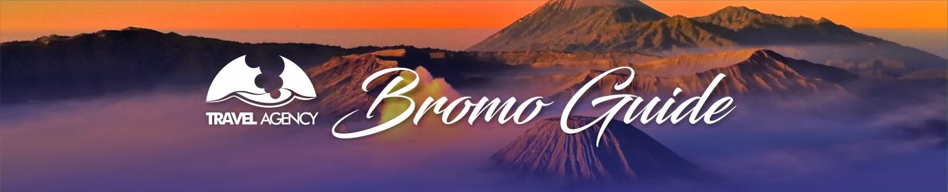 PAKET WISATA BROMO, Bromo Guide Tour